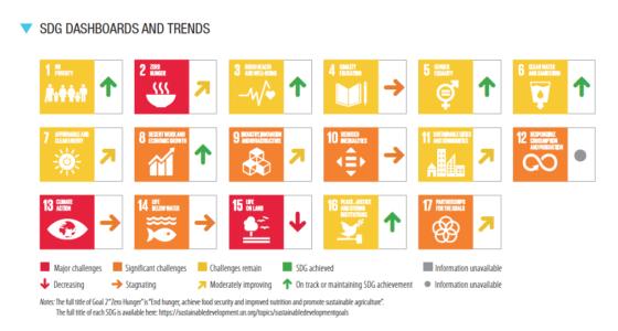 ficha España ODS 2021