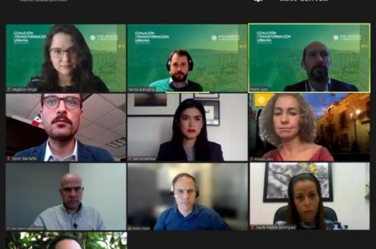 Mosaico-participantes Zoom