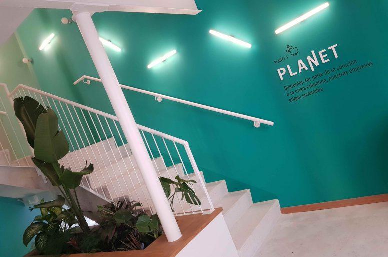Planta Planet copia